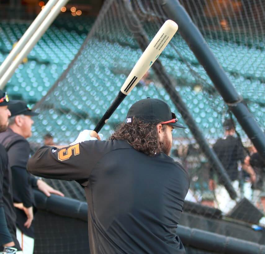Brandon Crawford Warstic