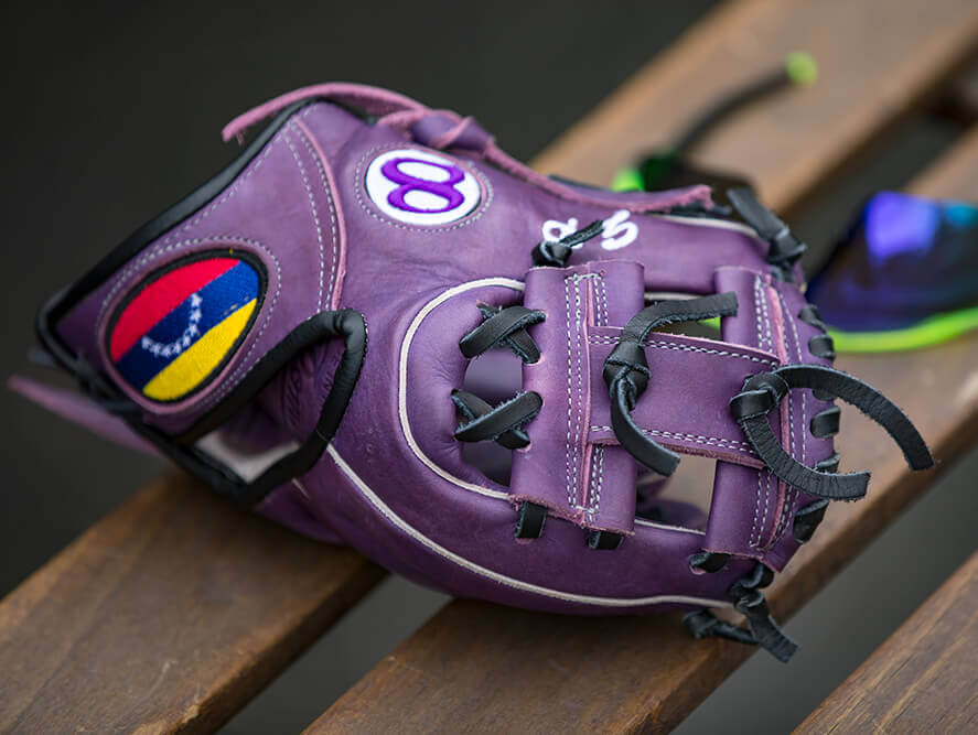 Gerardo Parra Training Glove