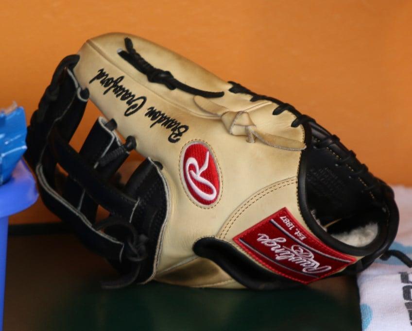 brandon-crawford-rawlings-glove