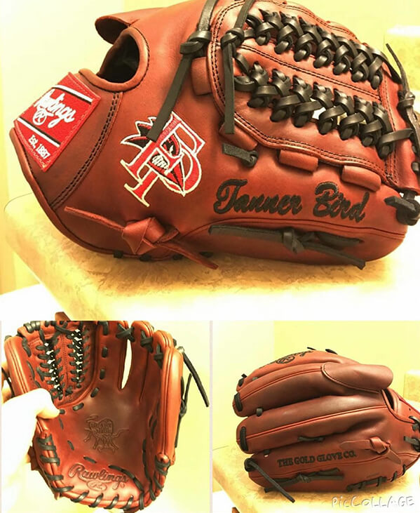 @tanner_bird's Rawlings Glove (Franklin Pierce)