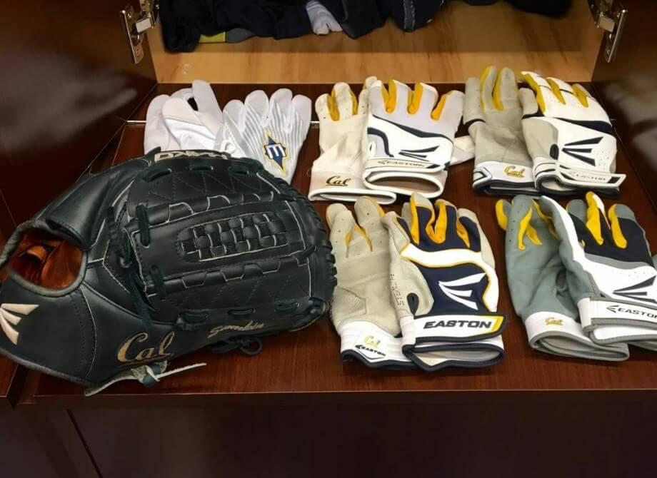 Siomkin's Easton Gloves