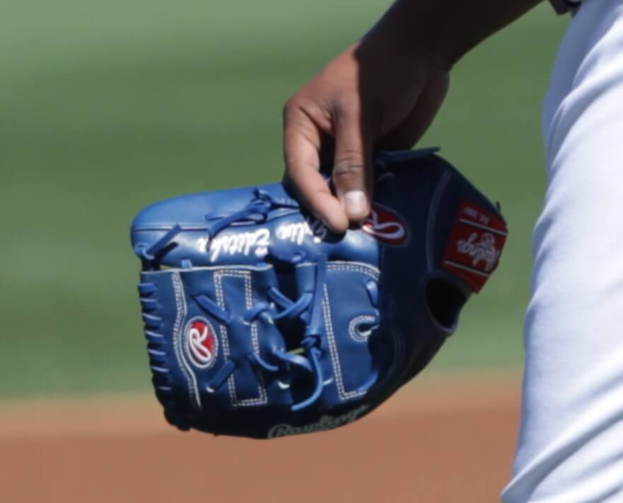Edinson Volquez Rawlings Glove 2