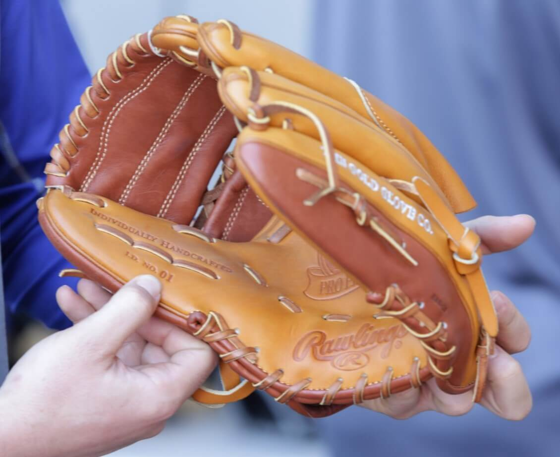 Taylor Cole Rawlings Glove 2
