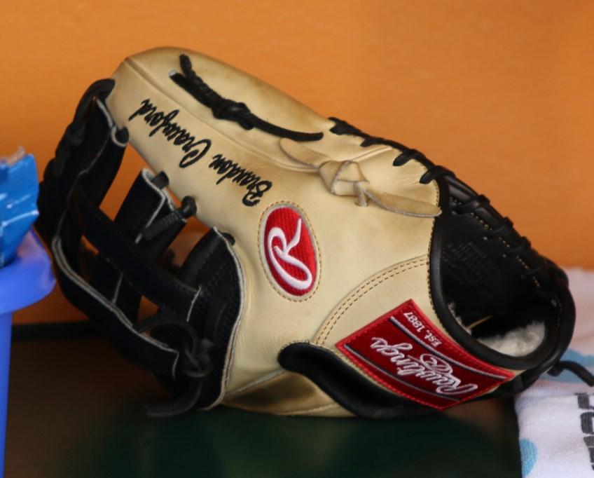 What Pros Wear: Best Shortstop Gloves: Swanson, Correa, Lindor