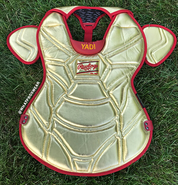 Yadi ASG Chest Protector