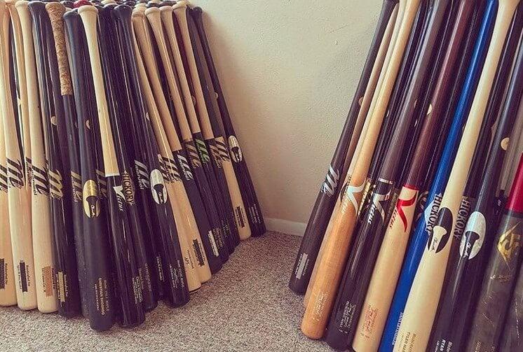 bats on bats